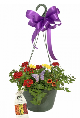 ANNUAL HANGING BASKET GREENHOUSE SPECIAL