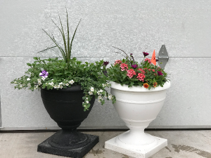Annual Urns Porch Pots in Warsaw, IN | ANDERSON FLORIST & GREENHOUSE