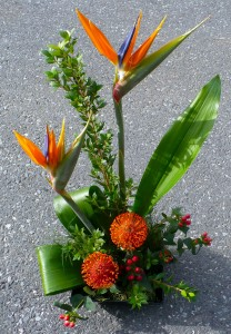Another Day in Paradise  Bird of Paradise, Protea, Berries and Foliage