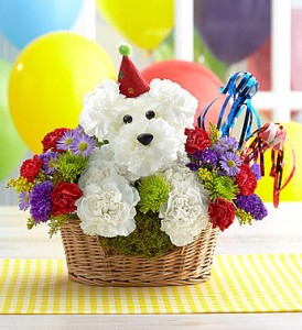 occasions birthday flowers another year rover