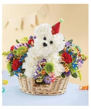Another Year Rover Best Seller! in Arlington, TX | Pantego Florist & Gifts