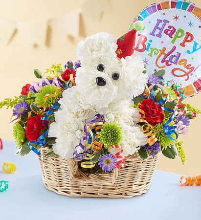 Another Year Rover Birthday Bouquet