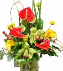 Anthirium Accent  Vase of Flowers