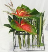 Anthurium Grid Fresh Floral Design in Covington, Washington | The Royal Bee Florist