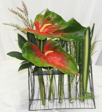 Anthurium Grid Fresh Floral Design