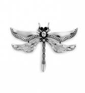 Antique Silver Dragonfly Pin