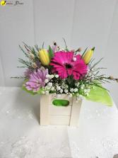 AP-Boxed Blooms