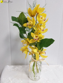 AP-Lacey Perfection orchids come in different sizes