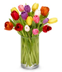 Tulips For You!  in Maplewood, NJ   GEFKEN FLOWERS & GIFT BASKETS
