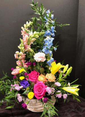 May flowers  in Melbourne, FL | VIOLETS IN BLOOM