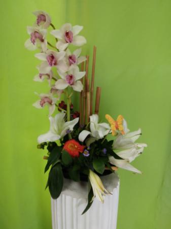 arangement # 1 orquideas