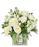 Arctic Cheer Bouquet in Virginia Beach, Virginia | Shore Drive Florist