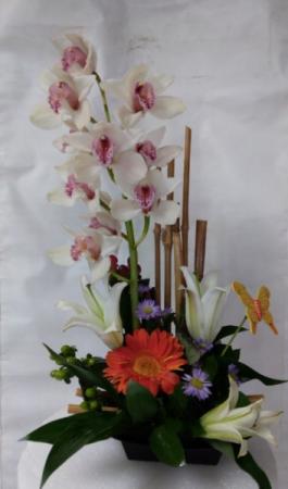 arrangement # 1 exotic designer