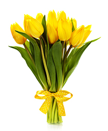 Arrietta Bouquet