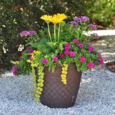 Artful Outdoor Planters