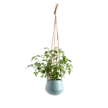 Ashbury Leather Hanging Teal Ceramic planter Planters