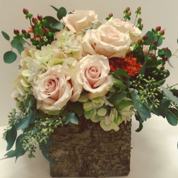 Aspen Winter rustic birch box