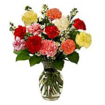 Assorted  Carnations Vasaed Arrangements