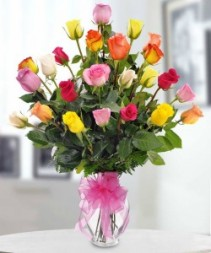 Assorted color long steam roses every day
