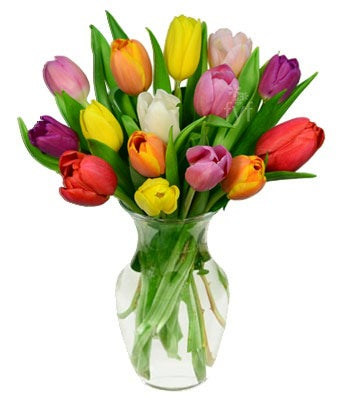 Assorted colored tulip bouquet