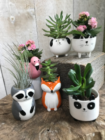 "Assorted ""Mini Critter"" Planters"