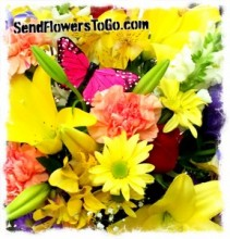 Spring in Bloom  Fresh Mixed Arrangement