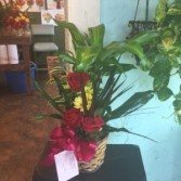 assorted planter/basket accented with afew flowers