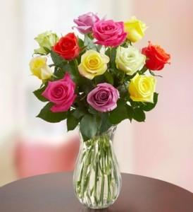 Assorted Rose Dozen