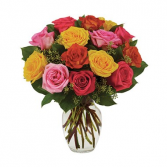 Assorted Roses - Bright item #BF230-11KM
