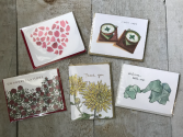 Assorted Selection  Gotomago Greeting Cards