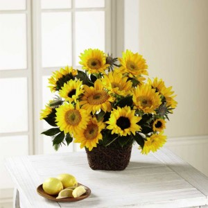 Assorted Sunflower Basket