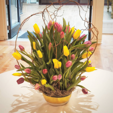 Assorted Tulip Bowl Get well soon