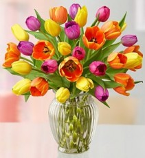 ASSORTED COLOR TULIPS