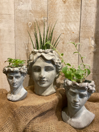 Athens and David Head planters