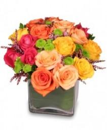 Energetic Roses Arrangement