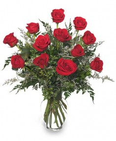 Classic Dozen Roses Red Rose Arrangement in Hornsby, NSW | Antique Rose Florist