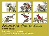 Audubon Card Set Winter Birds A2 Size, No message on front, blank inside