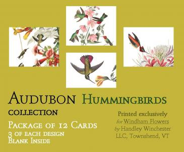Audubon Card Set Hummingbird Collection