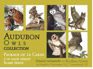 Audubon Card Set Owl Collection Set of 12 Cards
