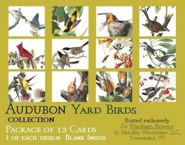 Audubon Card Set Yard Birds A2 Size