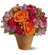 August In Terracotta Flower Arrangement