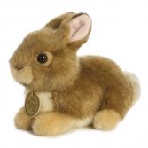 Aurora Plush Baby Bunny 7