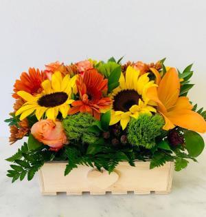 Autum Basket   in Tamarac, FL | Yosvi Flowers