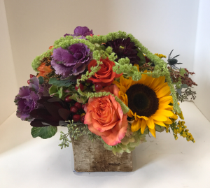 Autumn Birch box or glass cube   in Northport, NY | Hengstenberg's Florist