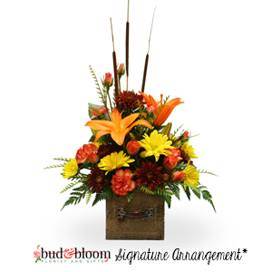 Autumn Blooms Fall Arrangement in Mooresville, IN | BUD AND BLOOM FLORIST AND GIFTS