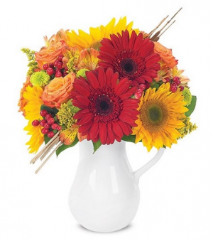 Autumn Celebration Pitcher Arrangement in Croton On Hudson, NY | Cooke's Little Shoppe Of Flowers
