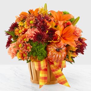 Autumn Celebration Special Design