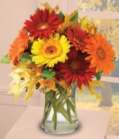AUTUMN DAISIES Fall Arrangement