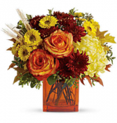 Autumn Expression Arrangement