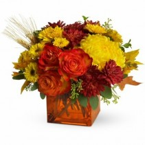 Autumn Expressions Fall Arrangement